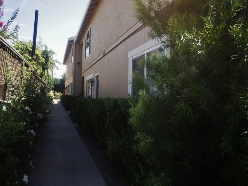41-A Squire Court, Hollister, California 95023, 2 Bedrooms Bedrooms, ,1 BathroomBathrooms,Apartment,For Rent,Squire Court,1103