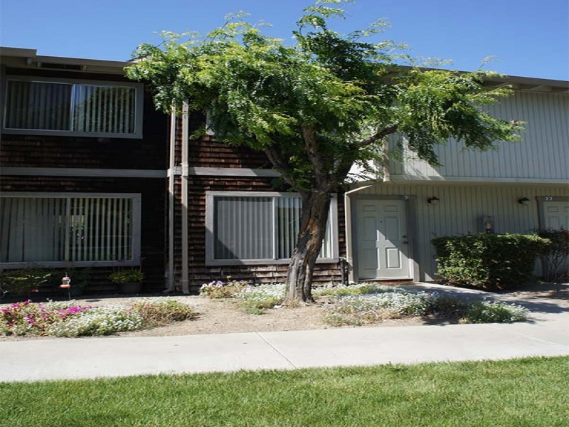 450 Tres Pinos Road, Hollister, California 95023, 2 Bedrooms Bedrooms, ,1 BathroomBathrooms,Apartment,For Rent,Tres Pinos Road,1028